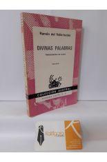 DIVINAS PALABRAS. TRAGICOMEDIA DE ALDEA