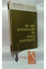 DE LOS EVANGELIOS AL JESÚS HISTÓRICO. INTRODUCCIÓN A LA CRISTOLOGÍA