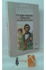 UN LUGAR LLAMADO ESTHERVILLE - LA CASA DE LA COLINA