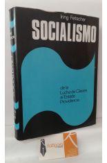 SOCIALISMO, DE LA LUCHA DE CLASES AL ESTADO PROVIDENCIA