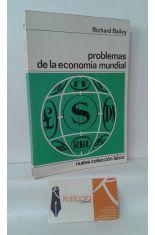 PROBLEMAS DE LA ECONOMÍA MUNDIAL