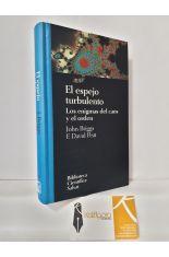 EL ESPEJO TURBULENTO. LOS ENIGMAS DEL CAOS Y EL ORDEN