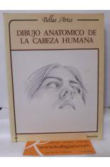 DIBUJO ANATÓMICO DE LA CABEZA HUMANA